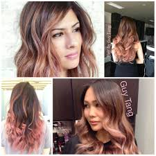rose gold lowlights on dark hair amazing gold hair color ideas 2017 new hair color ideas trends
