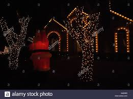 lights on trees during time in plano stock photo
