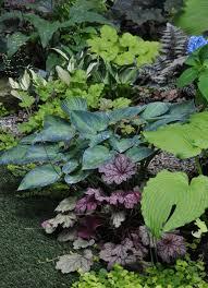 258 best in the garden images on pinterest dream garden flowers