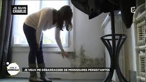 enlever humidit chambre comment supprimer la moisissures et traiter l humidité dans