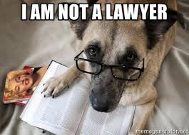 Lawyer Dog Meme - i am not a lawyer dog reading book meme generator