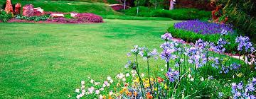 all care landscape maintenance service el paso tx las cruces nm