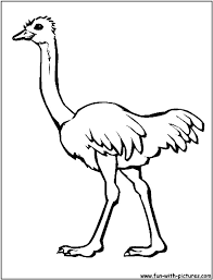 ostrich coloring pages animals printable coloring pages coloringzoom