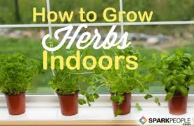Indoor Herb Garden Kit Australia - how to start an indoor herb garden sparkpeople
