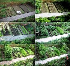 vegetable garden layout plans quotes the garden inspirations