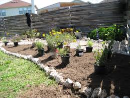 texas native plants landscaping how to a round rock garden