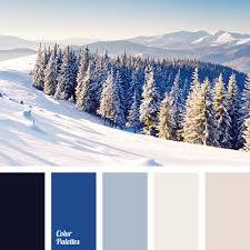 winter color schemes winter color palette color palette ideas