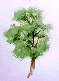 how to paint trees in watercolor susie free watercolor tips