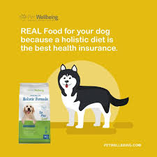 Dog Food Meme - premium holistic dog food for all life stages pet wellbeing