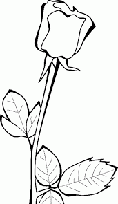 coloring pages roses coloring pages roses coloring pages