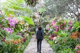Botanical Garden Orchid Show 15 Breathtaking Botanical Gardens To Visit This Season Gardens