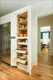 Pull Out Kitchen Shelves by Kitchen Corner Cabinet Organizer Slidingdrawer Kitchen Cabinet