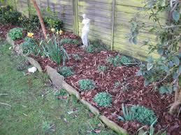 low maintenance flower garden willowcottagegarden