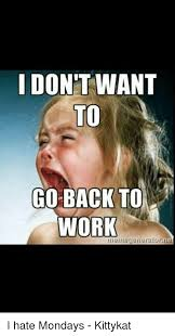 Hate Work Meme - don t want to go back to work i hate mondays kittykat meme on