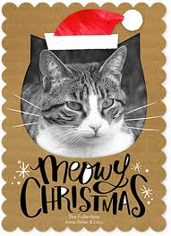cards featuring your cat or design ideas coupons