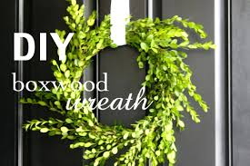 fresh boxwood wreath large wreaths wholesale 18 lapland holidays info