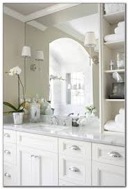 Brushed Nickel Bathroom Cabinet Brushed Nickel Cabinet Knobs With Backplate Cabinet Home