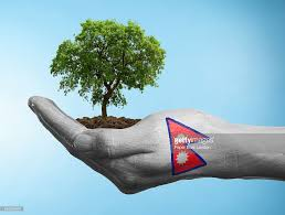 Pics Of Nepal Flag Hand With Flag Of Nepal Holding A Tree Stock Photo Getty Images