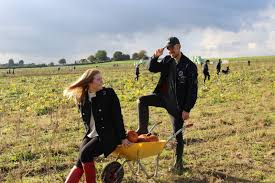 pumpkin picking champagne lifestyle