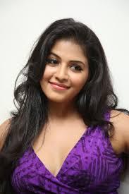 south actress anjali wallpapers anjali at balupu success meet photos download anjali at