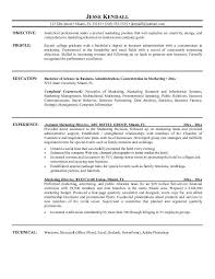 Examples Of The Resume Objectives by Executive Resume Objective Examples
