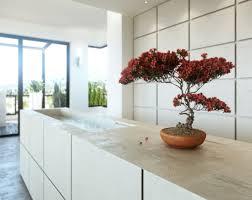 plante cuisine decoration design d intérieur cuisine blanche plante bonsai décoration