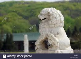 foo dog lion guardian lions imperial guardian lions shi foo dog fu