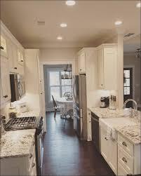 flat front kitchen cabinet doors choice image doors design ideas