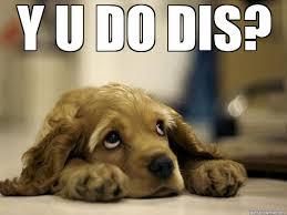 Sad Meme Generator - sad puppy weknowmemes generator
