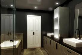 Bathroom With No Window Master Bath Lighting Pictures Interior Design Ideas Small Space Gray