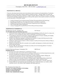 resume objectives for management sample resume program director