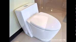 Modern Toilet by Modern Bathroom Toilet Modern One Piece Dual Flush Toilet