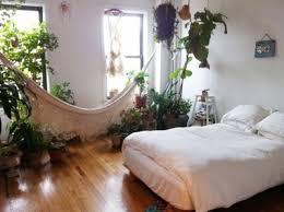 grünpflanzen im schlafzimmer zimmerpflanzen schlafzimmer brocoli co