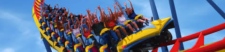 Backyard Roller Coaster For Sale by All Rides Six Flags Great Adventure