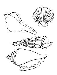 seashell for kids free coloring pages on art coloring pages
