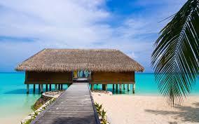 maldives tropical beach wallpaper 2560x1600 30955