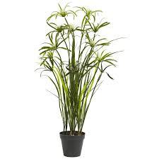 silk plants 3 papyrus silk plant silk specialties