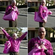Bryan Cranston Memes - bryan fabulous cranston breaking bad know your meme