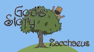 god u0027s story zacchaeus on vimeo