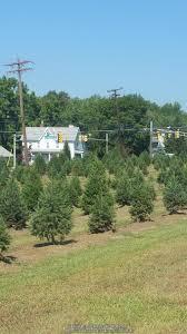 farming forum christmas tree farming garden org