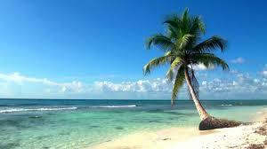 relaxing full hd film ocean live wallpaper dreamscene youtube