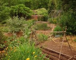 Potager Garden Layout Plans How To Design A Potager Garden Gardening How