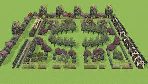 Fruit Tree Garden Layout Pacific Horticulture Society Well Bred Fruit For The Maritime