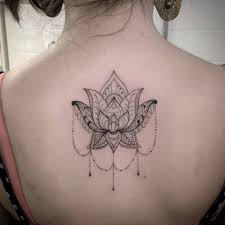 collection of 25 beautiful lotus on back for