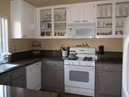 Steel Kitchen Cabinet Appliances Diy Mirrored Kitchen Cabinets Storage Pantry Country