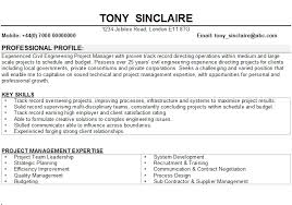 Sample Interests For Resume by Civil Engineering Cv Sample