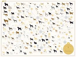 afghan hound saddle the diagram of dogs by pop chart lab an art print featuring 181