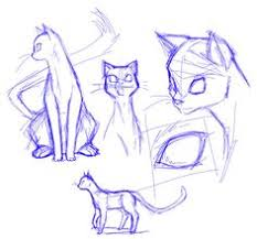 how to draw a cat let u0027s get started koooooooooooooooo