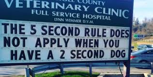 church signs i raise you vet signs album on imgur