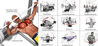 Bench Press Program Chart A Sample Chest Workout Routine Gym Workout Chart All